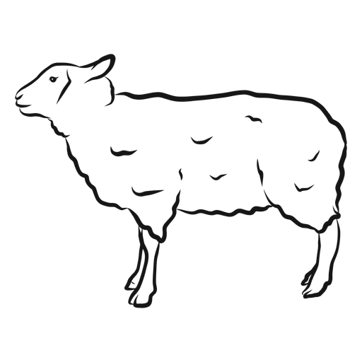 Sheep hoof wool lamb sketch Transparent PNG