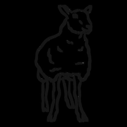Bosquejo de pezuña de oveja oveja lana Transparent PNG