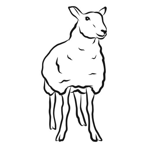 Sheep lamb wool hoof sketch Transparent PNG