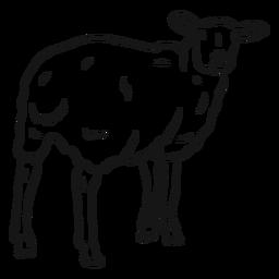 Bosquejo de pezuña de lana de oveja