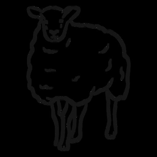 Sheep wool lamb hoof sketch Transparent PNG
