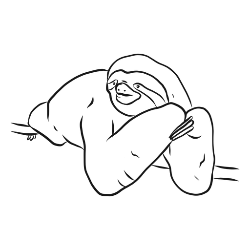 Sloth claw branch sketch Transparent PNG