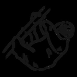 Esboço de garra de ramo de árvore de preguiça