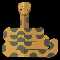 Serpiente largo reptil plano
