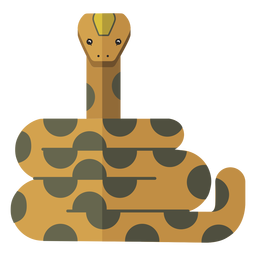 Snake long reptile flat