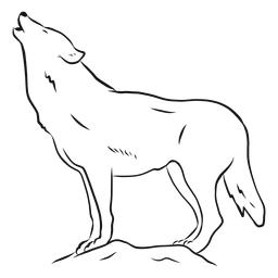 Esboço de rabo de cauda de url predador de lobo