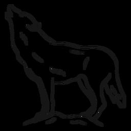 Lobo depredador aullido pierna cola boceto