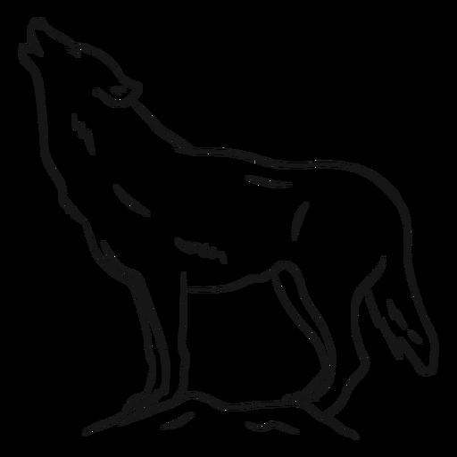 Lobo depredador aullido pierna cola boceto Transparent PNG