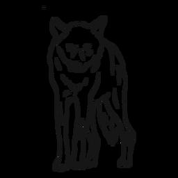 Bosquejo de pierna depredador lobo