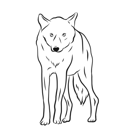 Bosquejo de pierna depredador lobo Transparent PNG