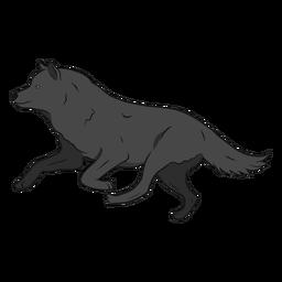 Ilustración de cola de pierna de depredador lobo