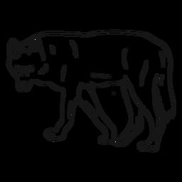 Bosquejo de cola de pierna depredador lobo