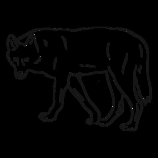 Bosquejo de cola de pierna depredador lobo Transparent PNG