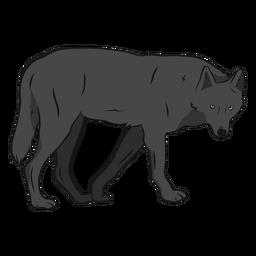 Ilustración de pierna de cola de depredador lobo