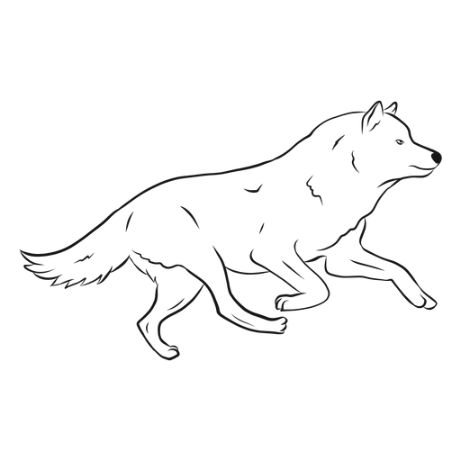 Bosquejo de pierna de cola de depredador lobo Transparent PNG