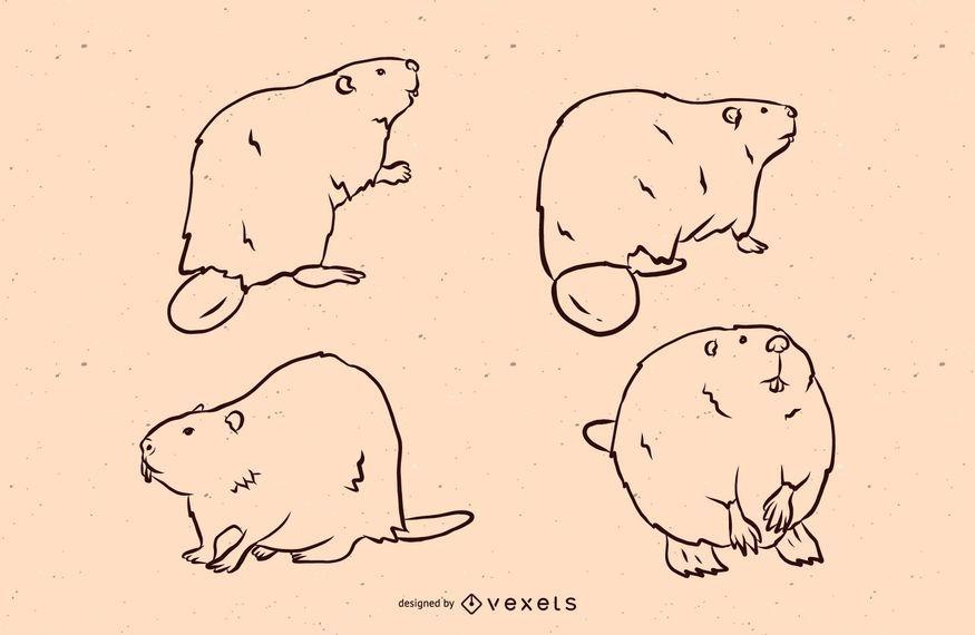 Conjunto de ilustración de línea de castor
