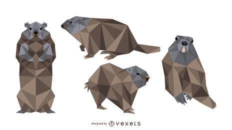 Design de vetor de marmota poligonal