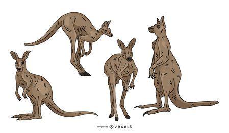 Conjunto de ilustração colorida de canguru