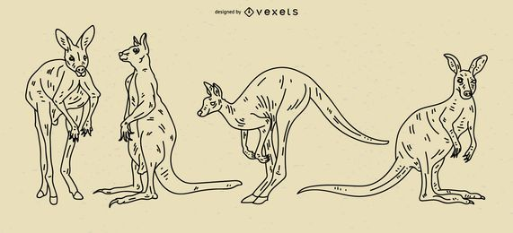 Conjunto de ilustração de acidente vascular cerebral de canguru