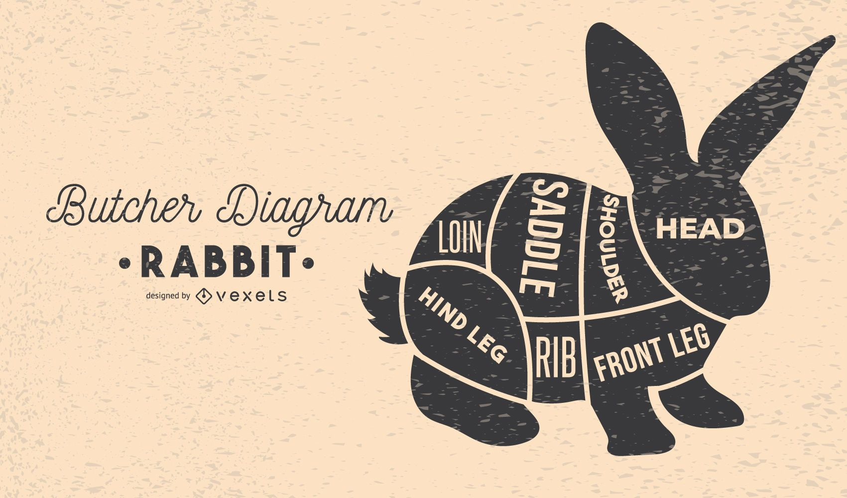 Projeto do diagrama do açougueiro de coelho