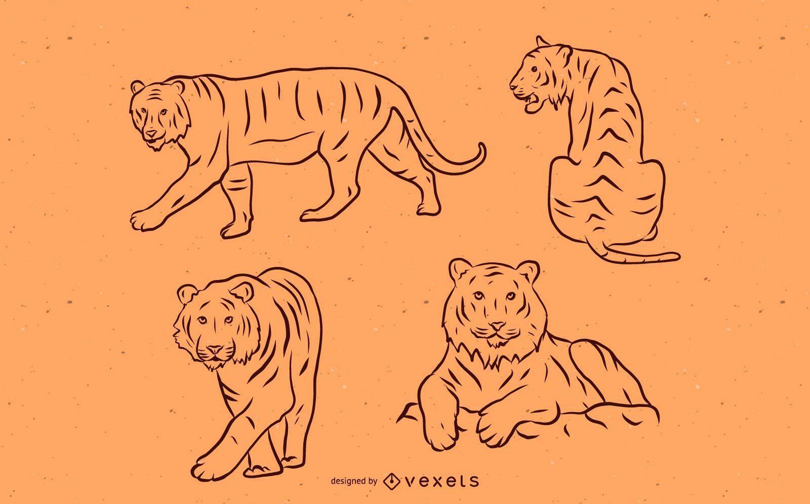 Conjunto de trazos de tigre