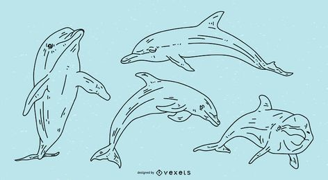 Dolphin Stroke Illustration Set