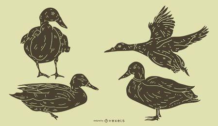 Conjunto detallado de la silueta del pato
