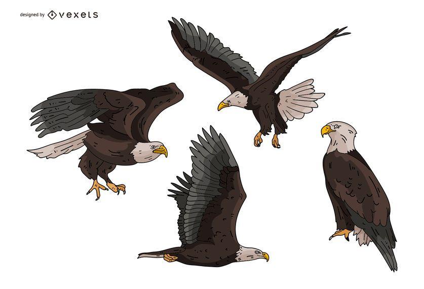 Adler-Illustrationssatz