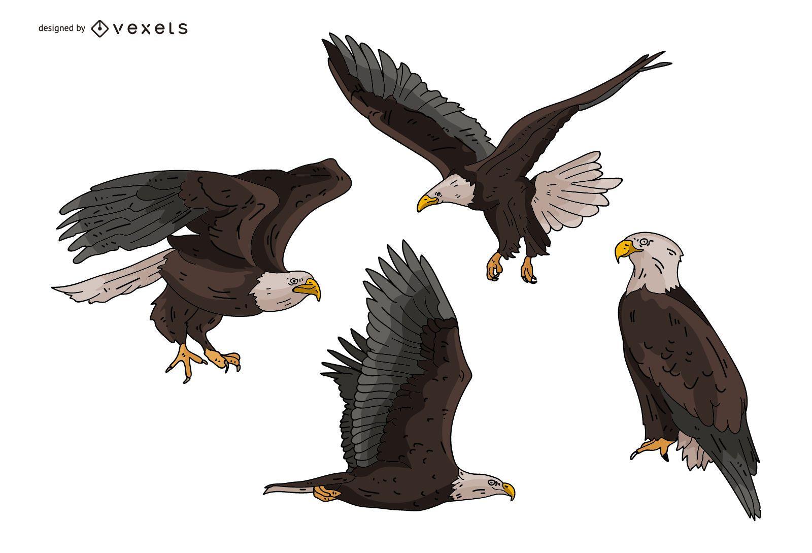Eagle Illustration Set