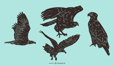 Conjunto de silhueta detalhada de águia
