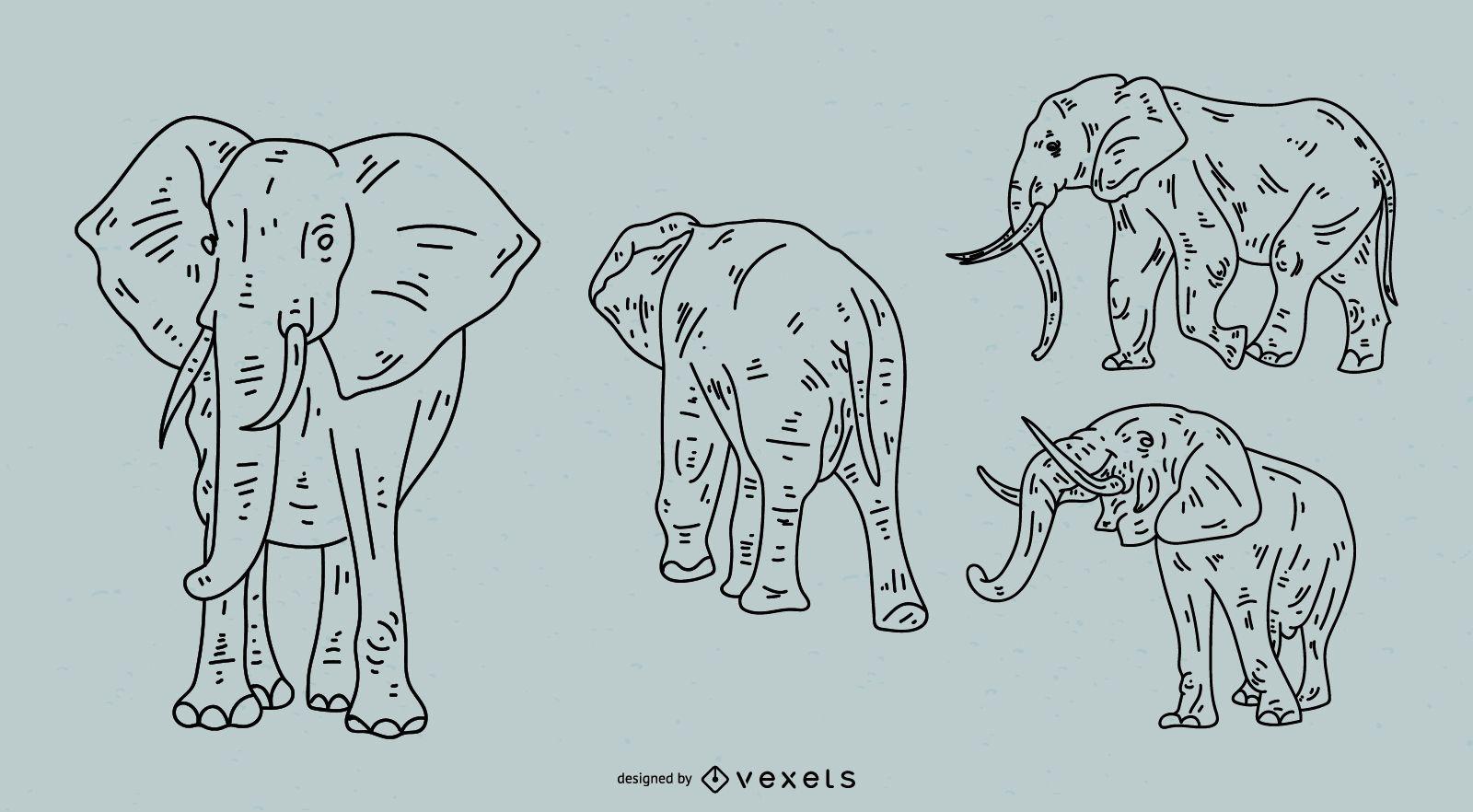 Conjunto de estilo de trazo de elefante