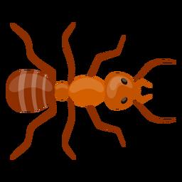Ant feeler antenna flat