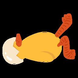 Casca de bico de frango plana
