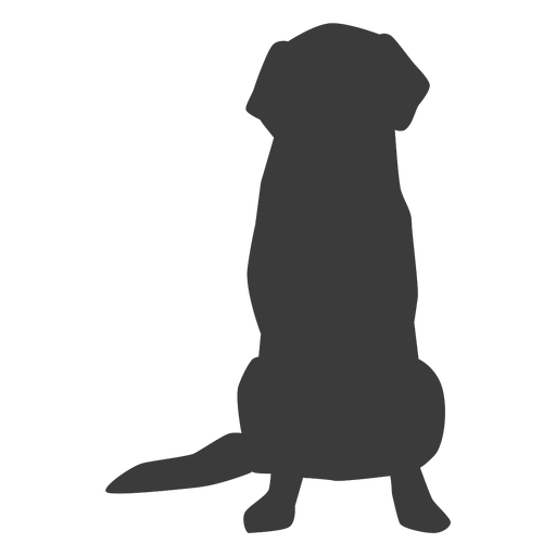 Dog puppy ear tail silhouette Transparent PNG