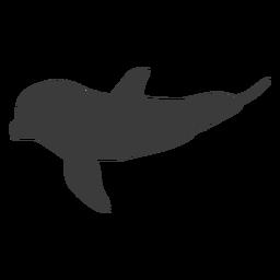 Delphinflipper-Schwanzschattenbildtier
