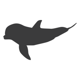 Dolphin flipper tail silhouette animal