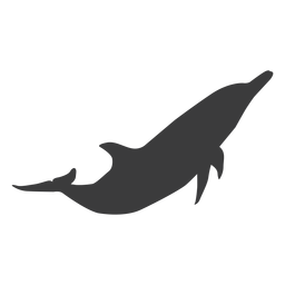 Dolphin tail flipper silhouette animal