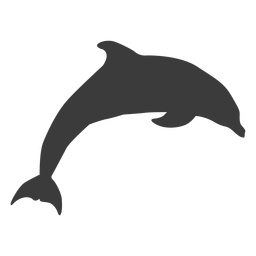 Dolphin tail flipper swimming silhouette