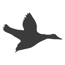 Drake-Entenschnabel-Flügelschattenbild