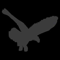 Silhueta de mosca de garça de asa de bico de águia