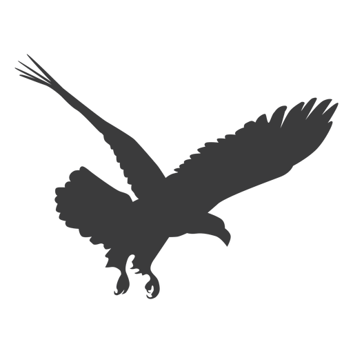 Eagle beak wing talon fly silhouette Transparent PNG