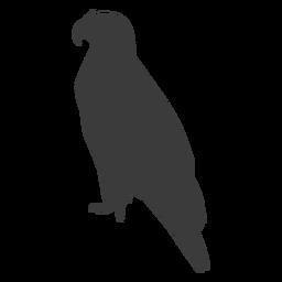 Ala de águila pico talon silueta