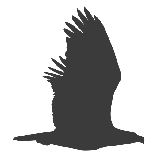 Eagle wing fly flying beak silhouette bird Transparent PNG