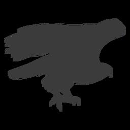 Ala de águila volar volar pico talon silueta pájaro
