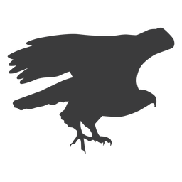 Eagle wing fly flying beak talon silhouette bird
