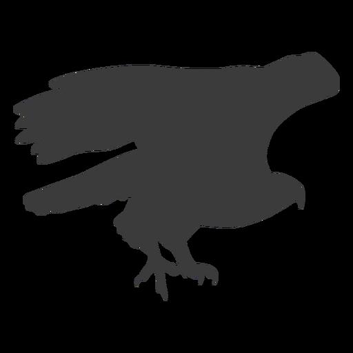 Ala de águila volar volar pico talon silueta pájaro Transparent PNG