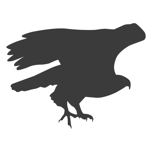 Eagle wing fly flying beak talon silhouette bird Transparent PNG