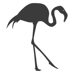 Flamingo beak pink leg silhouette bird