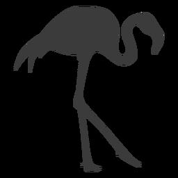 Flamingo pico rosa pierna silueta pájaro