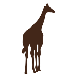 Giraffe tail neck tall long ossicones silhouette